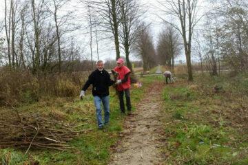 Het Borgweer bij Wehe den Hoorn is door het Odensehuis Groningen geadopteerd waardoor er elke donderdagmiddag de mogelijkheid bestaat om zich uit te leven met groenwerkzaamheden in de open lucht. De deelnemers dragen zo actief bij aan de groene leefomgeving en hebben een zinvolle activiteit in de natuur.
