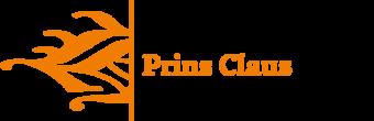 prins-claus-conservatorium